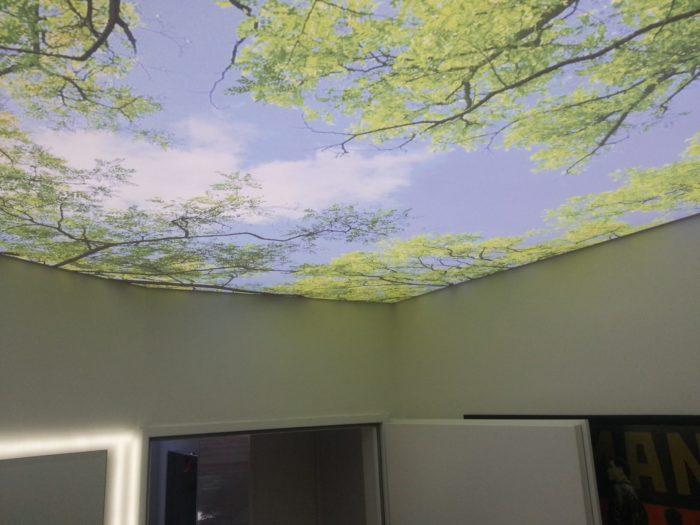 Осень на натяжном потолке